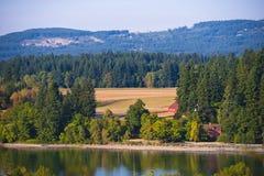 Sommerlandschaft mit gelben bewaldeten Hügeln des Feldes und des Sees Stockfoto