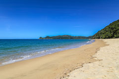 Sommerlandschaft mit goldenem sandigem Strand, blauer Ozean, Abel Tasman Lizenzfreie Stockfotos