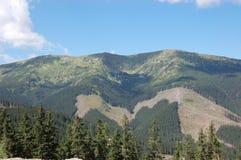 Sommerlandschaft mit grünen Bergen im niedrigen Tatras, Slovaki Stockbilder
