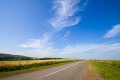 Sommerlandschaft mit landwirtschaftlicher Straße Lizenzfreie Stockfotos