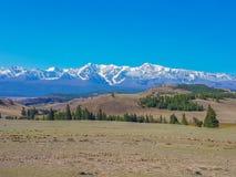 Sommerlandschaft mit Schnee bedeckte Berge auf dem Horizont mit einer Kappe Lizenzfreie Stockfotografie