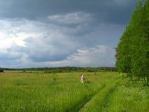 Sommerlandschaft mit Wolken und Wald Stockfotos