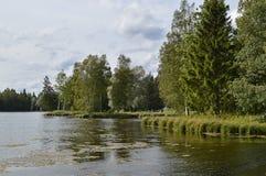 Sommerlandschaft am See Lizenzfreies Stockfoto