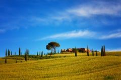 Sommerlandschaft in Toskana Stockbilder