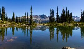 Sommerlandschaft von Blackcomb-Berg lizenzfreies stockfoto