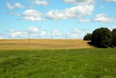 Sommerlandschaft von Feldern und von Wiesen unter blauem Himmel Stockfotografie