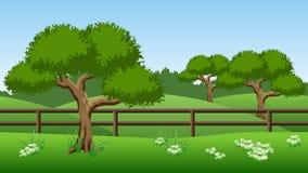 Sommerlandschaftshintergrund mit grünen Bäumen, Hügeln und chamomil Stockbild