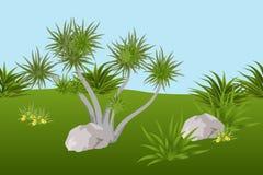 Sommerlandschaftshintergrund mit tropischem Baum, Blättern und sto Lizenzfreie Stockfotos