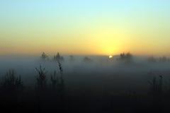 Sommerlandschaftsnebeliger Morgen an der Dämmerung Lizenzfreie Stockbilder