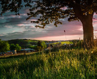 Sommerliche Stimmung. A beautiful evening where I could enjoy a wonderful sunset Stock Image