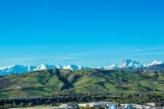 Sommermorgen auf den grünen Hügeln Stockbilder