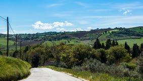 Sommermorgen auf den grünen Hügeln Lizenzfreie Stockbilder