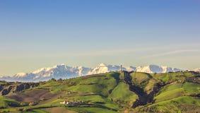 Sommermorgen auf den grünen Hügeln Stockbild