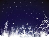 Sommernacht vektor abbildung