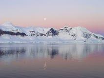 Sommernacht in Antarktik Stockbilder