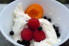 Sommernachtisch mit Frischkäse und Beeren: Himbeerbrombeermaulbeeren Lizenzfreie Stockbilder