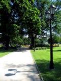 Sommerpark Stockfotos