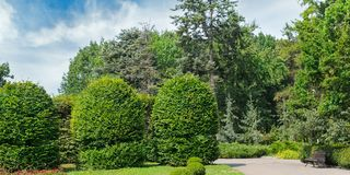 Sommerpark, Hecke, grüne Wiese und blauer Himmel Breites Foto stockfoto