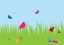 Sommerprogrammfehler und Vogelhintergrund Lizenzfreies Stockfoto