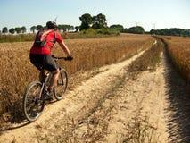 Sommerradfahren Lizenzfreie Stockfotografie