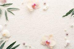 Sommerrahmen von Muscheln, von Blumen u. von Perlen auf weißem Strandsand Lizenzfreie Stockfotos