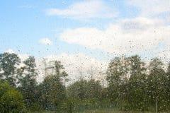 Sommerregen am Fenster Stockbild