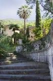 Sommerreise in Abchasien anblick Lizenzfreie Stockfotografie