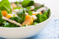 Sommersalade met raketsalade, mandarin, paddestoelen en kaas gorgonzola in een witte ceramische kom Royalty-vrije Stock Afbeelding