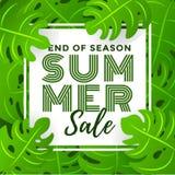 Sommerschlussverkauf mit tropischem Blatt-Hintergrund Lizenzfreie Stockbilder