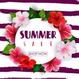 Sommerschlussverkaufrundenhintergrund mit tropischen Blumen lizenzfreie abbildung