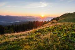 Sommersonnenaufganglandschaft in den Karpatenbergen lizenzfreie stockfotografie