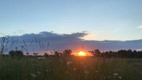 Sommersonnenuntergang auf dem Gebiet stock video