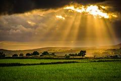 Sommersonnenuntergang mit Sonnenstrahlen durch Wolken lizenzfreie stockfotografie