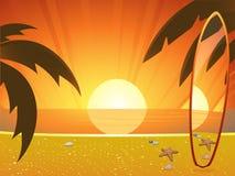 Sommersonnenuntergang und -surfbrett Stockbilder
