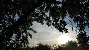 Sommersonnenuntergang-Zeitspanne, Schleife stock footage