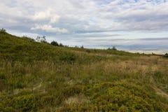 Sommersonnenunterganglandschaft in den Karpatenbergen lizenzfreie stockfotos
