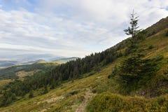 Sommersonnenunterganglandschaft in den Karpatenbergen lizenzfreie stockfotografie