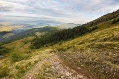 Sommersonnenunterganglandschaft in den Karpatenbergen lizenzfreies stockfoto