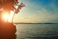 Sommersonnenunterganglandschaft - Schattenbilder von Bäumen auf der Klippe gegen den malerischen Himmel und das Wasser Stockbilder