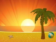 Sommersonnenuntergangstrand mit Palme Stockfotografie