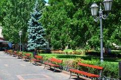 Sommerstadtpark, heller sonniger Tag, Bäume mit Schatten und grünes Gras Stockbilder