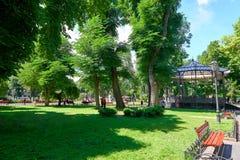 Sommerstadtpark mit Völkern, hellem sonnigem Tag, Bäumen mit Schatten und grünem Gras Stockbilder