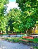 Sommerstadtpark am Mittag, am hellen sonnigen Tag, an den Bäumen mit Schatten und am grünen Gras Lizenzfreie Stockfotos