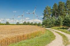 Sommertag in der ökologisch sauberen Region von Europa Lizenzfreies Stockfoto