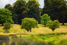 Sommertag in der englischen Landschaft mit Strom und Rotwild Lizenzfreies Stockbild