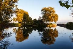 Sommertag durch einen See Stockbild