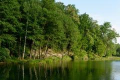 Sommertag an einem Waldsee Lizenzfreies Stockbild