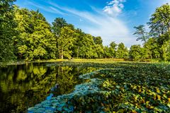 Sommerteich im tschechischen Garten Stockfotos