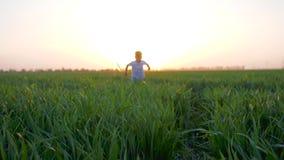 Sommerunterhaltung des springenden Jungen am Feldgras in der Sonne strahlt in der Zeitlupe aus stock video