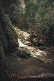 Sommerwasserfallszene Lizenzfreie Stockbilder